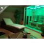 Sauna Boreal Infrarouge 200x135